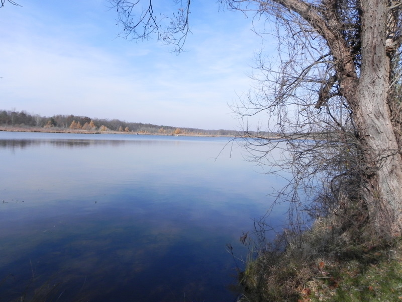 Lakefront homes for sale on Little Portage Lake in Dexter